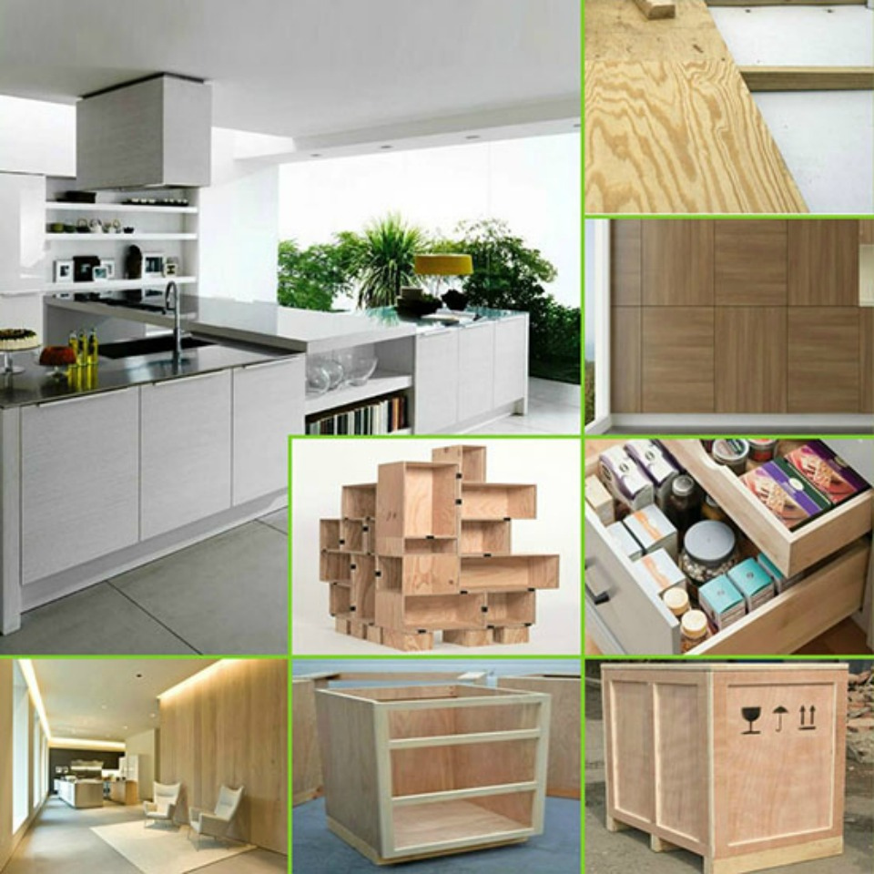 board ply trading products